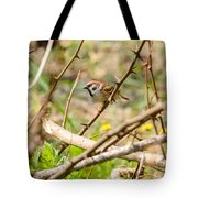 Sparrow In The Thorns Tote Bag