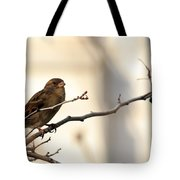Sparrow On A Limb Tote Bag