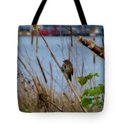 Sparrow On The Cattails Tote Bag