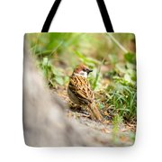 Sparrow On The Ground Tote Bag