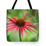 Spash Of Red Tote Bag