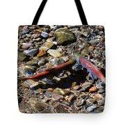 Spawning Salmon - Odell Lake Oregon Tote Bag