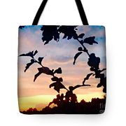 Special View Of Sunset Tote Bag