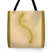 Species Number One F Tote Bag