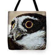 Spectacle Owl Tote Bag