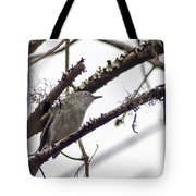 Spectacled Visitor Tote Bag