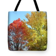 Spectacular Autumn Colors Tote Bag