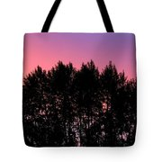 Spectacular Silhouette Tote Bag
