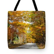 Speed Limit 25 Mph Tote Bag