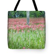 Spellbound By Indian Paint Brush. Tote Bag