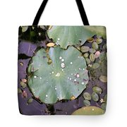 Spider And Lillypad Tote Bag