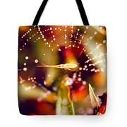 Spider And Spider Web Tote Bag