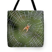 Spider In A Dew Covered Web Tote Bag