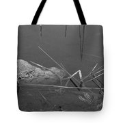 Spider In Water Tote Bag
