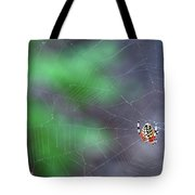 Spider In Web Tote Bag