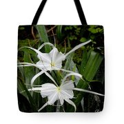 Spider Lilies Tote Bag