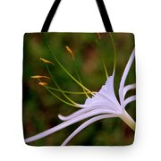 Spider Lilly Flower 2 Tote Bag