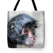 Spider Monkey Face Closeup Tote Bag