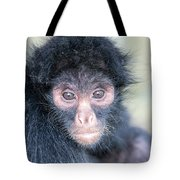 Spider Monkey Face Tote Bag
