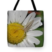 Spider On Daisy Tote Bag