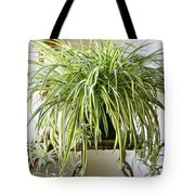 Spider Plant Tote Bag