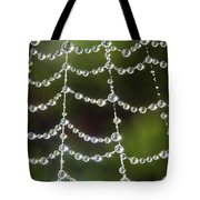 Spider Web Decorated By Morning Fog Tote Bag