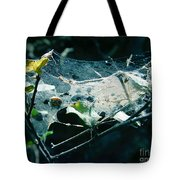 Spider Web  Tote Bag