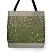 Spider Web With Water Droplets  Tote Bag