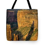 Spider Woman Rock Two Tote Bag