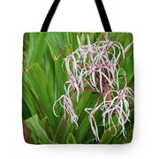 Spider,lily Tote Bag