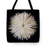Spidermum11 Tote Bag
