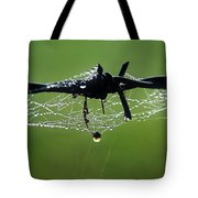Spiderweb On Fencing Tote Bag