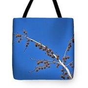 Spike Ball Tree Tote Bag
