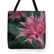 Spiky Pink Tote Bag