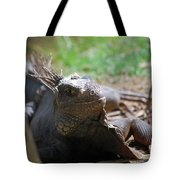 Spines Along The Back Of An Iguana In The Tropics Tote Bag