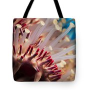 Spines Of A Crown Of Thorns Starfish Tote Bag