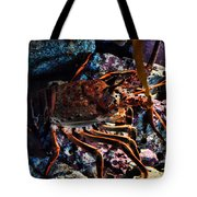 Spiney California Lobster Tote Bag