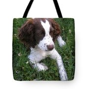 Spinger Spaniel Pup Tote Bag