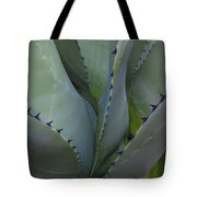 Spiny Cosmos Tote Bag by Lon Dittrick