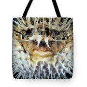 Spiny Puffer Tote Bag