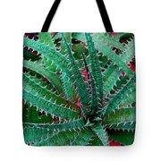 Spiral Cactus Tote Bag