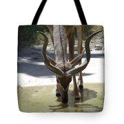 Spiral Horned Antelope Drinking Tote Bag