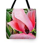 Spiral Pink Tulips Tote Bag
