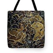 Spirals In Corals Tote Bag