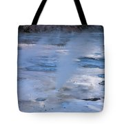 Spirit Of The Earth  Tote Bag