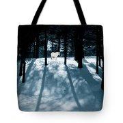 Spirit Pony In A Shadowed Wood Tote Bag