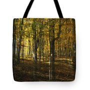 Spirits In The Woods Tote Bag