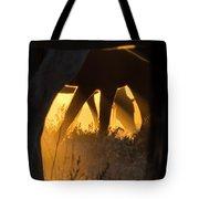Spiritual Walker Tote Bag by Nicole Markmann Nelson