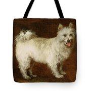 Spitz Dog Tote Bag by Thomas Gainsborough
