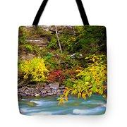 Splash Of Color Along The Creek Tote Bag